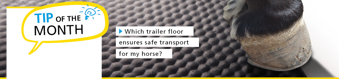 Which trailer floor ensures safe transport for my horse?